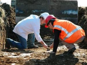 Archéologues au travail