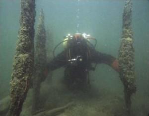 Plongée lacustre